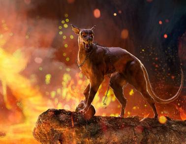 !hellcat
